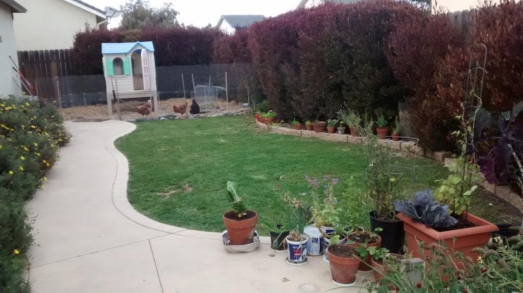BreWalsh garden